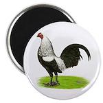 Birchen OE Cock 2.25