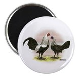 Birchen OE Bantams Magnet