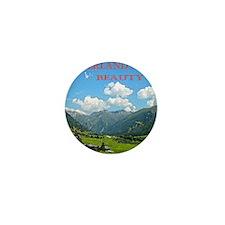 SWISS CAL COVER Mini Button