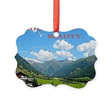 SWISS CAL COVER Ornament