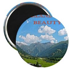 SWISS CAL COVER Magnet