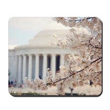 Cherry Blossoms in DC Mousepad