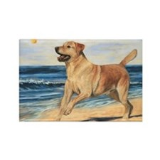 Lab on Beach Rectangle Magnet