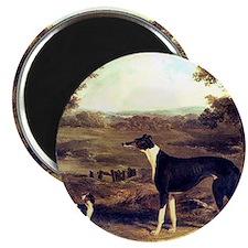 5x5 Greyhound Magnet