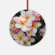 Pretty Pink Plumeria Flowers Round Ornament
