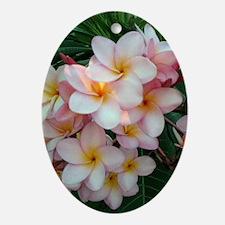 Pretty Pink Plumeria Flowers Oval Ornament