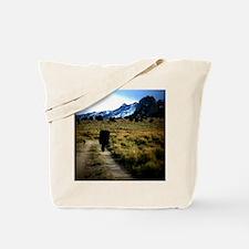 CastleRocksWalkingOut Tote Bag