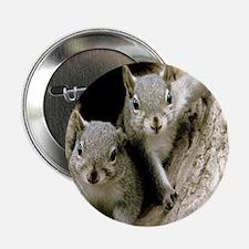 """Baby Squirrels 2.25"""" Button"""