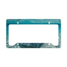 Underwater view of Southern S License Plate Holder