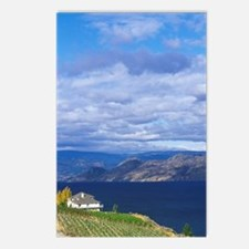 Vineyard on Okanagan Lake Postcards (Package of 8)