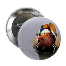 "Mandarin1 2.25"" Button"