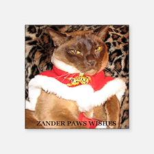 "IMG_0272_crop_b_Zander_Paws Square Sticker 3"" x 3"""