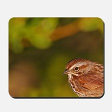 Song Sparrow (Melospiza melodia) on brid Mousepad