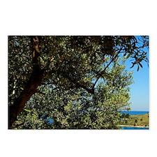 Albania, Butrint, Ksamili Postcards (Package of 8)