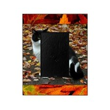 Tuxedo Cat Picture Frame