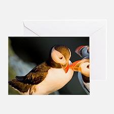The Atlantic Puffin, a pelagic seabi Greeting Card