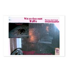Not in Kansas anymore TOTO Postcards (Package of 8