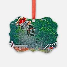 D1203-581hdr Ornament