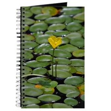 lillypad_iPad2_cover Journal