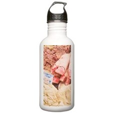 Tripe and Pig Feet For Water Bottle