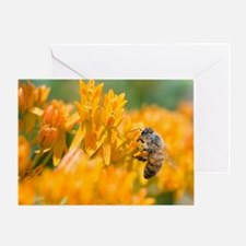 Wall Calendar-Bee and Pollinators Ca Greeting Card