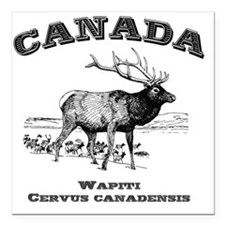 "Canadian Wapiti Square Car Magnet 3"" x 3"""
