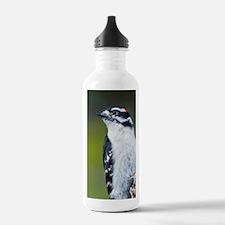 Downy Woodpecker (Pico Water Bottle