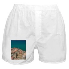 Town with 13th century Duomo from La  Boxer Shorts