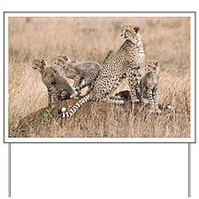 Cheetah and cubs5 -large Yard Sign