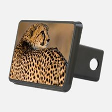 Cheetah4-large Hitch Cover