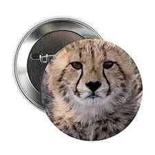 """Cheetah Cub4-1large 2.25"""" Button"""