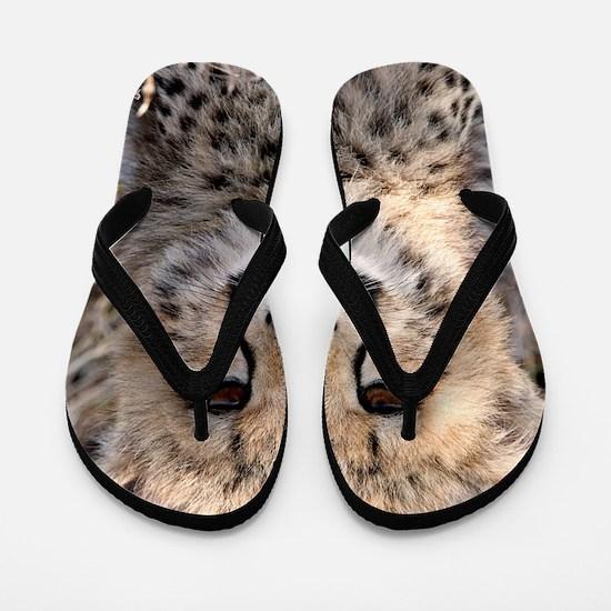 Cheetah Cub4-1large Flip Flops