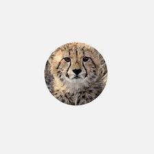 Cheetah Cub4-1large Mini Button