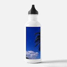 Palm tree lined beacho Water Bottle