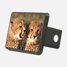 Cheetah cubs2 large Hitch Cover