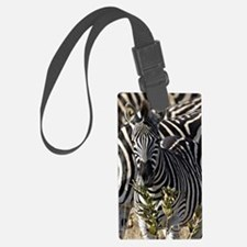 Zebras Large Luggage Tag