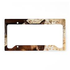 IMG_0297_TC_long License Plate Holder