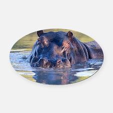 Hippo Oval Car Magnet