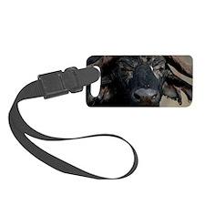 African Buffalo Luggage Tag