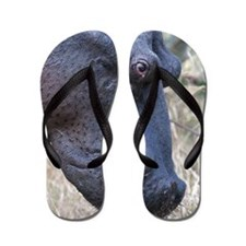 Hippo Profile Flip Flops