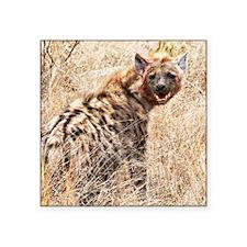 "Hyena Square Sticker 3"" x 3"""