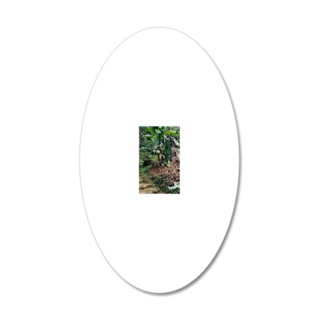 Caribbean, BWI, St. Lucia, M 20x12 Oval Wall Decal