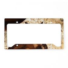 IMG_0296_TC_long4 License Plate Holder