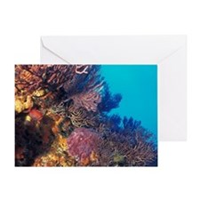 Caribbean, Tobago. The Bookends, ree Greeting Card