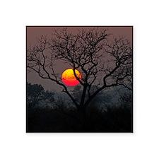 "Sunset at Londolozi Square Sticker 3"" x 3"""