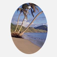 Caribbean, St. Kitts. Swim fins on b Oval Ornament
