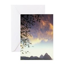 Soufriere. Sunset view of the Pitons Greeting Card