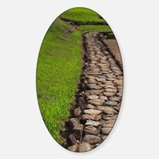Pathway at ancient Taino people's c Decal