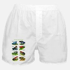 Poison Dart Frogs Boxer Shorts