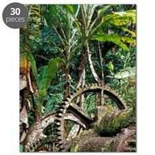 Caribbean, BWI, St. Lucia, Mill ruins at Py Puzzle